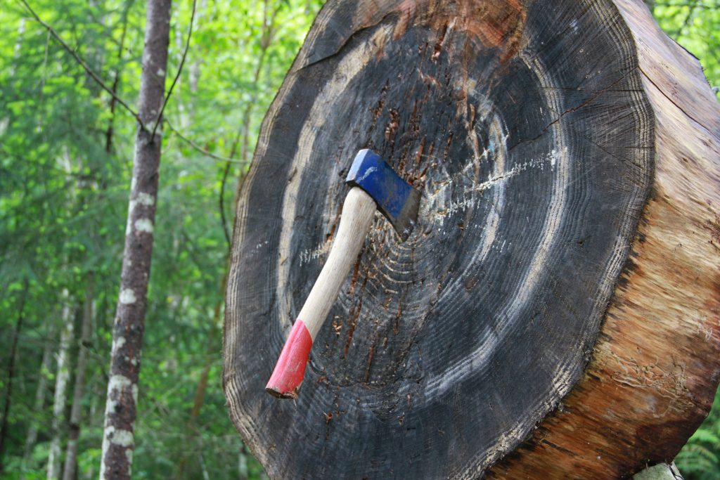 Axe Throwing to Illustrate Loyalty Incentives   Element - The Prize & Incentive People